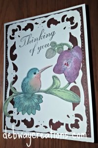 humingbird card 2016-07-11 15.07.07